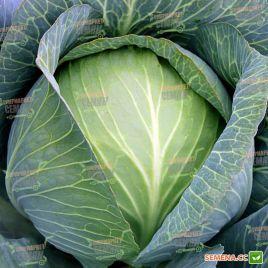 Супермаркет F1 (калибр.) семена капусты б/к поздней 110-120дн 2,5-3кг (Lucky Seed)