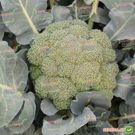 Айронмен F1 семена капусты брокколи (Seminis)