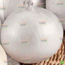 Дивино F1 семена лука репчатого среднепозднего длинного дня 45-110гр белого (Seminis) НЕТ СЕМЯН