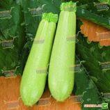 Искандер F1 (Eskenderany F1) семена кабачка ультрараннего 43 дн. светло-зеленого (Seminis)