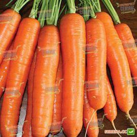 Карболи F1 семена моркови среднеспелой Нантес 115 дн (Seminis) НЕТ СЕМЯН