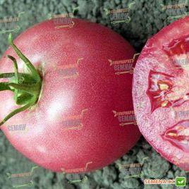 Пинк Уникум F1 семена томата индет. раннего окр.-прип. розового 230-240г (DRS-Seminis)