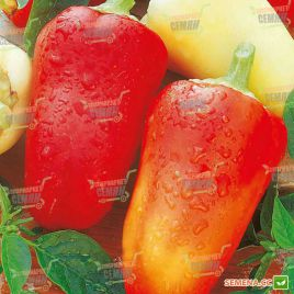 Белоснежка семена перца сладкого среднераннего 110 дн. бел./красн. конич. (Semenaoptom)