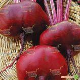 Египетский плоский семена свеклы столовой (Semenaoptom)
