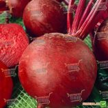 Красный Шар семена свеклы столовой (Semenaoptom)