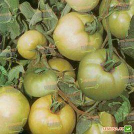 Лонг Кипер семена томата дет. 100-150 гр. (Semenaoptom)