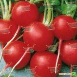 Ранний Красный семена редиса (Semenaoptom)