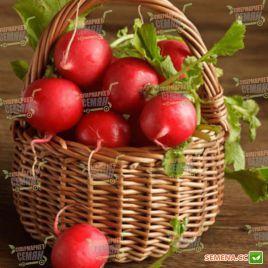 Ранний Красный семена редиса 25 дн. (Semenaoptom)