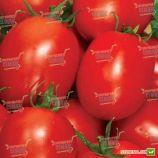 Рио Фуего семена томата дет. раннего 100-105 дн. слив. 100-120 гр. (Semenaoptom)