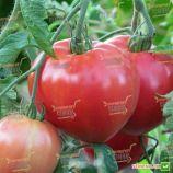 Розовое наслаждение семена томата индет. среднего 115-120 дн. окр.-припл. 350-500 гр. роз. (Semenaoptom)