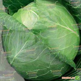 Тюркис семена капусты б/к поздней 140 дн. 3-3,5 кг (Semenaoptom)