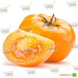 Желтое наслаждение семена томата дет желтого (Semenaoptom)