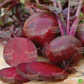 Болтарди семена свеклы столовой среднеранней 90-110 дн. окр. (Syngenta)