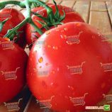 Фантастина F1 семена томата индет. среднераннего 60-85 дн. окр. до 170-190 гр красный (Syngenta)