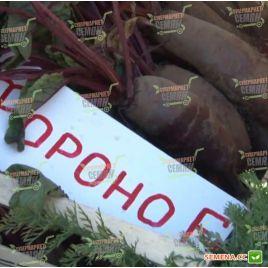 Фороно семена свеклы столовой поздней 125 дн. цилин. (Syngenta)