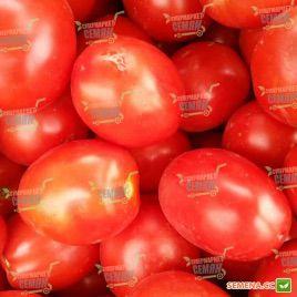 Фортикс F1 семена томата дет. раннего 60-65 дн. слив. 60-70 гр. (Syngenta)