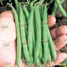 Патион семена фасоли спаржевой (Syngenta)