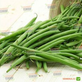 Серенгети семена фасоли спаржевой зел. (Syngenta)
