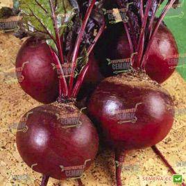 Детройт 2 семена свеклы столоыой (Agri Saaten)