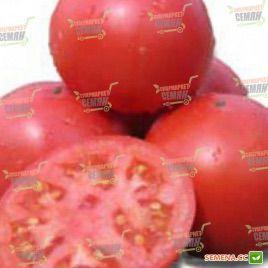 Пино F1 семена томата индет. розового (Agri Saaten)