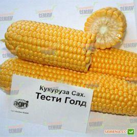 Тести Голд F1 семена кукурузы суперсладкой Sh2 ранней 73-75дн. 25см 18р. (Agri Saaten)