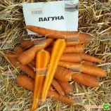 Лагуна F1 (1,6-1,8) семена моркови Нантес ультраранней от 60 дн. (Nunhems)