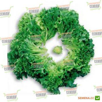 салат листовой мульти