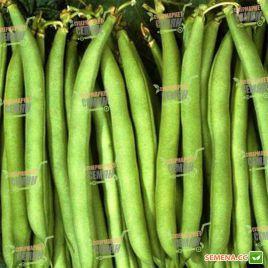 Нагано семена фасоли спаржевой кустовой 65-75дн зел. (Nunhems)