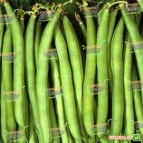 Нагано семена фасоли спаржевой (Bayer Nunhems)