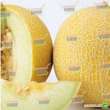 Соккар F1 семена дыни тип Ананас ранней 63-65 дн. 3-5 кг окр. оран./бел. (Nunhems) НЕТ ТОВАРА