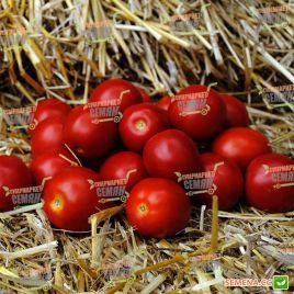 Солероссо F1 семена томата дет. раннего 90-95 дн. слив. 55-60 гр. (Nunhems)
