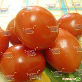 Бенито F1 семена томата дет. 65-68 дн. слив. 110-140г (Bejo)