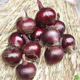 Робин семена лука репчатого красного среднего 108 дн. (Bejo)