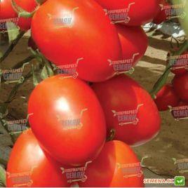 Гранадеро F1 Organic семена томата индет. раннего слив. 140-150 г (Enza Zaden/Vitalis)