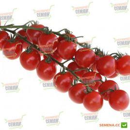 Баяя семена томата дет. черри раннего 90-95 дн. окр. 9 гр. балконный (Moravoseed)