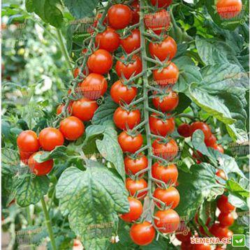 Идил семена томата индет. черри (Moravoseed)