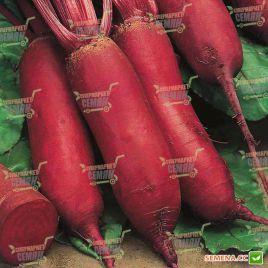 Монорубра семена свеклы столовой (Moravoseed)