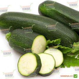 Нефертити семена цуккини темно-зеленого (Moravoseed)