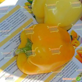 Тесла F1 семена перца сладкого среднераннего св. зел./желт. кубов. (Moravoseed)