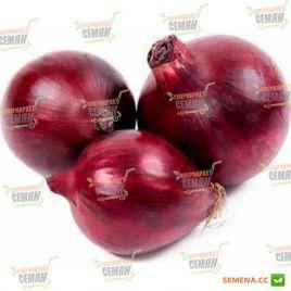 Виктория семена лука репчатого красного позднего 120-130 дн 110 гр (Moravoseed)