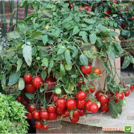 Вилма семена томата дет. черри раннего 90-95 дн. балкон. окр. 15-20 гр. (Moravoseed)
