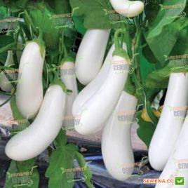 Аретуза F1 семена баклажана 70-75 дн. тип Алмаз 300-400 гр 16-18 см белого (Rijk Zwaan)
