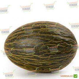 Бравура F1 семена дыни тип Пиел де Сапо среднеспелой 75-80 дн. 2-2,5 кг овал. (Rijk Zwaan)