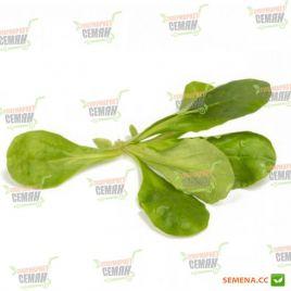 Диона семена салата тип Корн зел. (Rijk Zwaan)