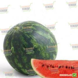 Онеида F1 семена арбуза тип Кримсон Свит раннего 60-62 дня 6-8 кг (Rijk Zwaan)