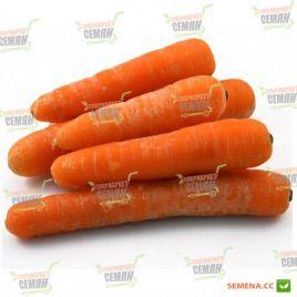 Рига F1 семена моркови Нантес. (калибр меньше 1,6) (Rijk Zwaan)