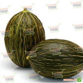Рикура F1 семена дыни тип Пиел де Сапо среднепоздней 75-85 дн. 1,8-2,2 кг овал. зел./бел. (Rijk Zwaan)