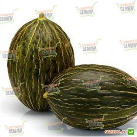 Рикура F1 семена дыни тип Пиел де Сапо среднепоздней 75-85 дн. 1,8-2,2 кг овал. (Rijk Zwaan)