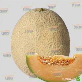 Карибиан Кинг (Кариббиан Кинг) F1 семена дыни тип Харпер среднепоздней 80-85 дн. 2-3 кг окр. (Rijk Zwaan)