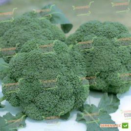 Баро Стар F1 семена капусты брокколи ранней 65-70 дн. 0,8-1кг (NongWoo Bio)